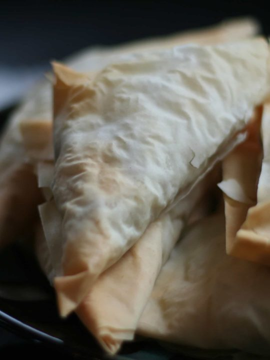 Easy Turkey Empanadas