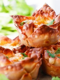 Sweet Potato Taco Cups - Crispy wonton cups filled with a black bean and sweet potato taco mix - these cute little taco cups are the perfect appetizer or meal!