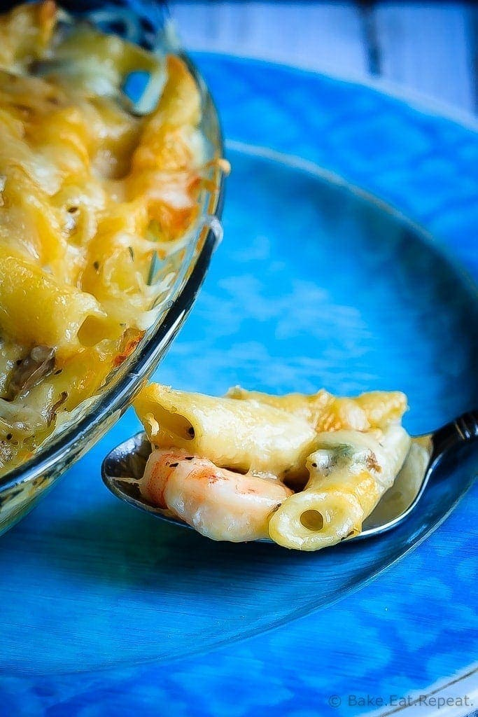 Baked Shrimp Pasta with Mushroom Alfredo Sauce - Cheesy baked pasta with a clam and mushroom alfredo sauce - cheesy comfort food at it's best! You will make this pasta again and again!