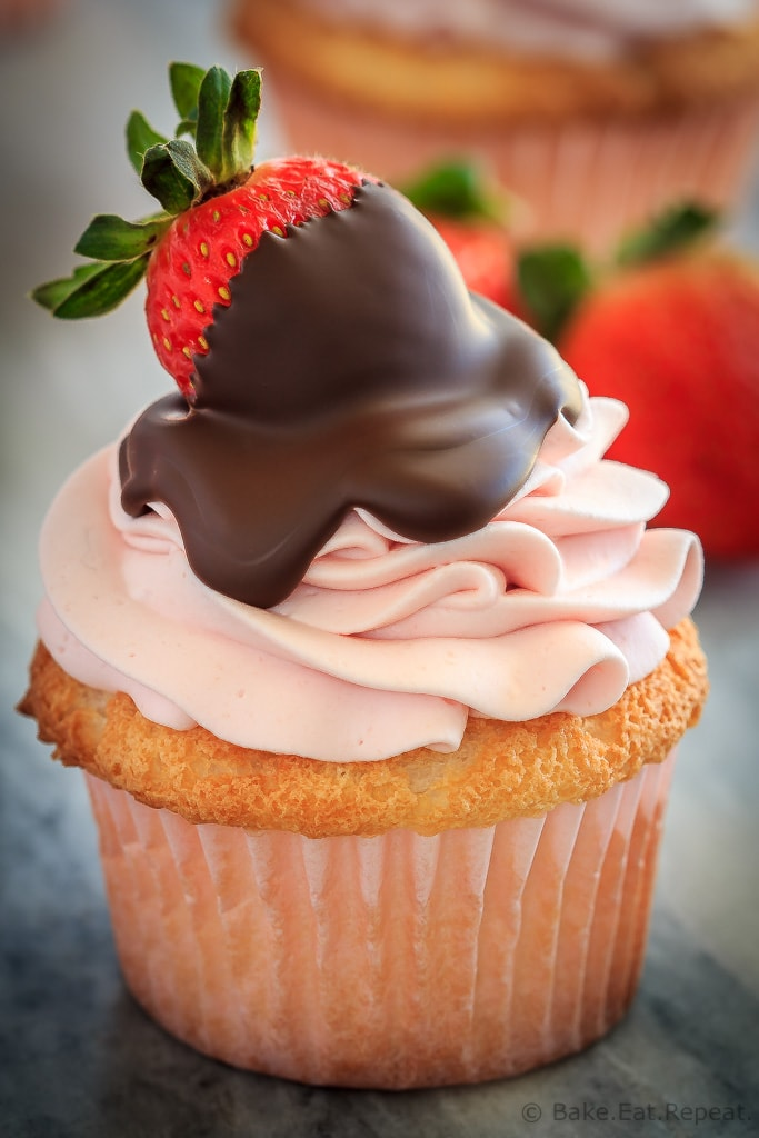 These chocolate covered strawberry cupcakes are the perfect sweet treat for Valentine's Day - angel food cupcakes with strawberry whipped cream frosting!