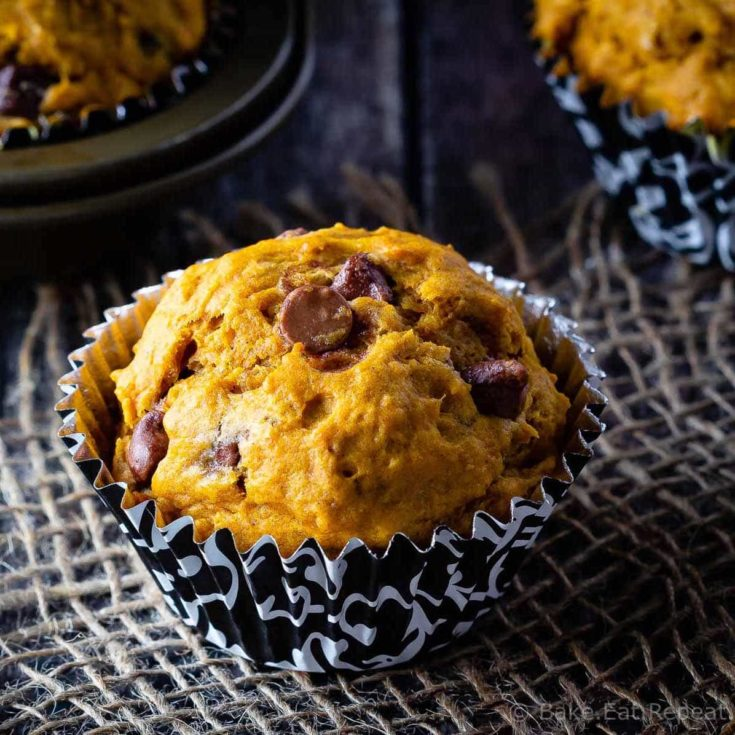 These chocolate chip pumpkin muffins mix up quickly for the perfect fall breakfast or snack! The whole family will love them!