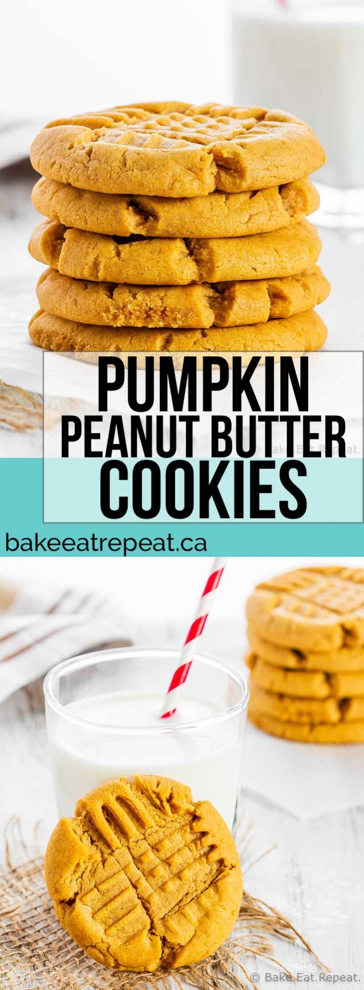 These pumpkin peanut butter cookies are soft and chewy with lots of cinnamon flavour. They make the perfect treat for enjoying pumpkin flavour in the fall! #pumpkin #peanutbutter #cookies #pumpkincookies #peanutbuttercookies
