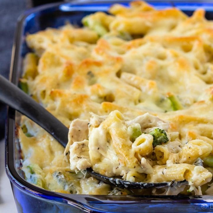 Chicken broccoli alfredo penne