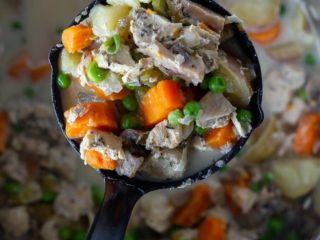 creamy Instant Pot chicken stew